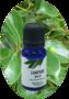 Cinnamomum camphora / Kamfer Wit