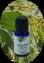 Eucalyptus citriodora / Eucalyptus Pipertone