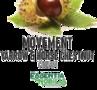 Movement Cream